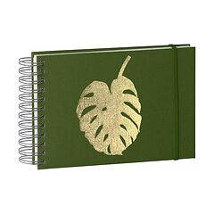 Monstera Mini Mucho Album